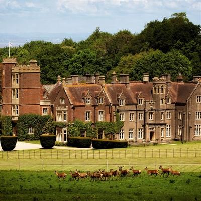 Somerset wedding venue St Audries Park provide assurance for wedding couples