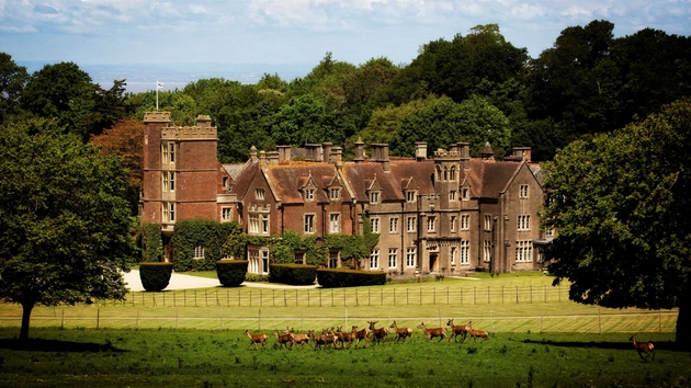 Somerset wedding venue St Audries Park exterior with deer in foreground